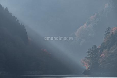 奥多摩湖畔の紅葉の写真素材 [FYI03409347]