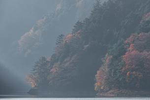 奥多摩湖畔の紅葉の写真素材 [FYI03409348]