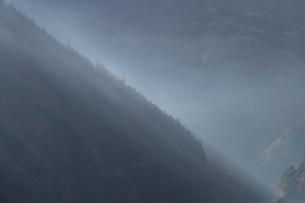 霧に包まれる奥多摩の写真素材 [FYI03409359]