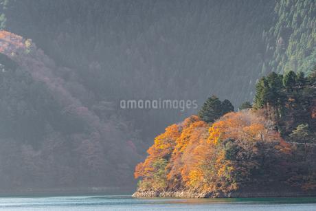 奥多摩湖畔の紅葉の写真素材 [FYI03409442]