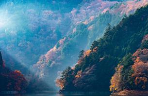奥多摩湖畔の紅葉の写真素材 [FYI03409460]