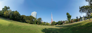 東京タワーと自然のパノラマの写真素材 [FYI03409527]