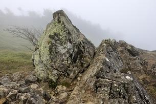 神部岩の写真素材 [FYI03409564]