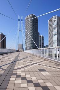 辰巳桜橋と東雲の高層タワーマンション群の写真素材 [FYI03409850]