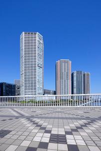 辰巳桜橋と東雲の高層タワーマンションの写真素材 [FYI03409851]