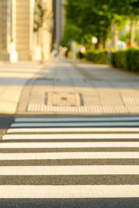 夕日に光る日比谷通りの歩道の写真素材 [FYI03409875]
