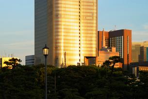 夕日に輝く高層ビルの壁面の写真素材 [FYI03409881]