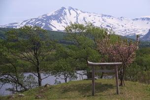 冬師湿原より望む鳥海山の写真素材 [FYI03410035]