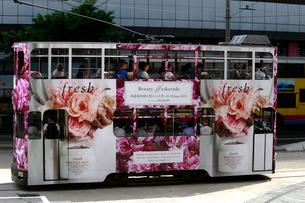 路面電車トラム。香港の庶民の足。の写真素材 [FYI03410266]