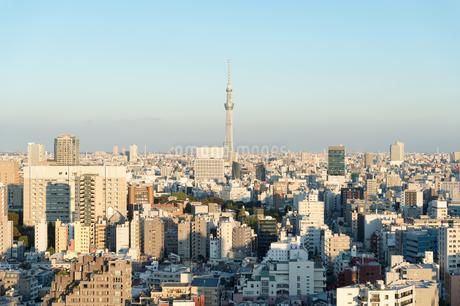 文京区から見た東京の夕暮れの写真素材 [FYI03410319]