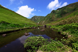 谷間の沼より望む男岳の写真素材 [FYI03410424]