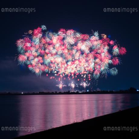 渡良瀬遊水地 日本 栃木県 栃木市の写真素材 [FYI03410449]