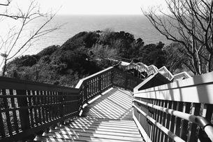 西伊豆 恋人岬 日本 静岡県 伊豆市の写真素材 [FYI03410461]