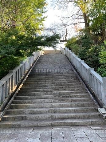 階段の写真素材 [FYI03410619]