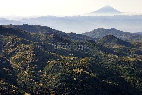 奥秩父から望む富士山の写真素材 [FYI03410782]