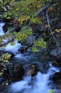 川の流れの写真素材 [FYI03410852]