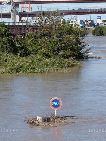 台風で大増水した荒川 東京都足立区の写真素材 [FYI03411152]