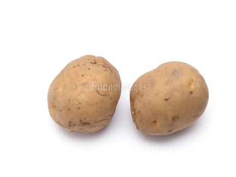 ジャガイモの写真素材 [FYI03411153]