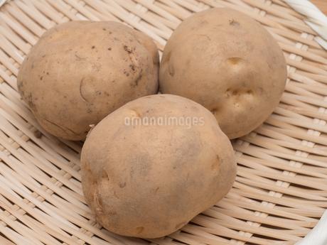 ジャガイモの写真素材 [FYI03411154]
