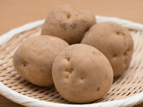 ジャガイモの写真素材 [FYI03411158]