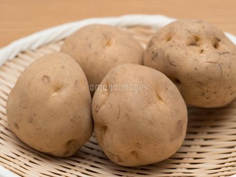 ジャガイモの写真素材 [FYI03411159]