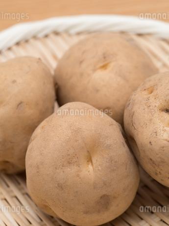 ジャガイモの写真素材 [FYI03411160]