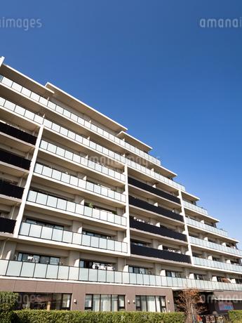 住宅街の大型マンションの写真素材 [FYI03411231]