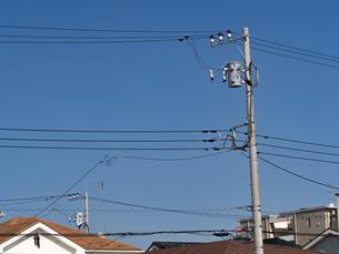 電線と電柱の写真素材 [FYI03411260]