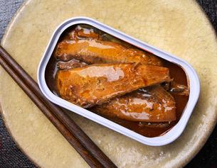秋刀魚の蒲焼の写真素材 [FYI03411349]