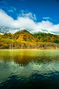 上高地大正池と雪の針樹林に紅葉の落葉広葉樹林の写真素材 [FYI03411355]