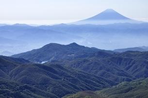 金峰山より富士山遠望の写真素材 [FYI03411465]