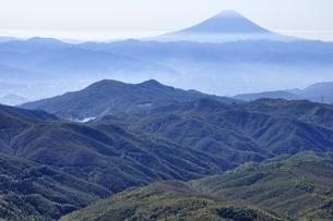 金峰山より富士山遠望の写真素材 [FYI03411477]