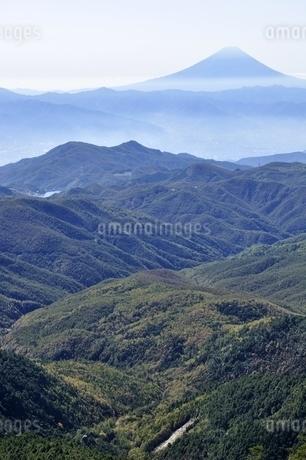 金峰山より富士山遠望の写真素材 [FYI03411479]