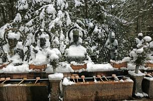冬の高野山奥之院の写真素材 [FYI03411700]