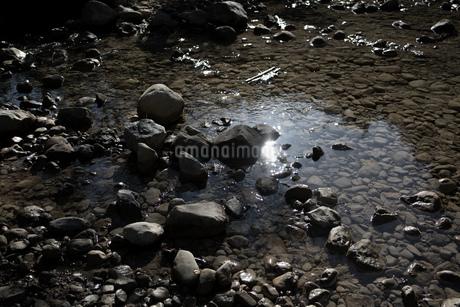 小石が沢山ある透明な川の水の一部が、光を受けて反射している様子の写真素材 [FYI03412174]