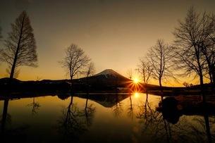 ふもとっぱらキャンプ場 日本 静岡県 富士宮市の写真素材 [FYI03412215]