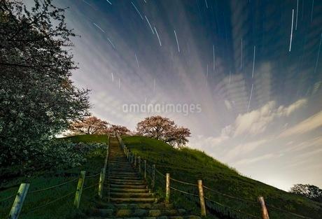 さきたま古墳公園 日本 埼玉県 行田市の写真素材 [FYI03412240]