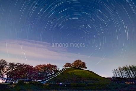 さきたま古墳公園 日本 埼玉県 行田市の写真素材 [FYI03412241]