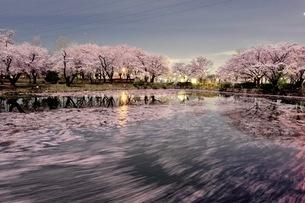 運動公園 日本 埼玉県 鶴ヶ島市の写真素材 [FYI03412312]