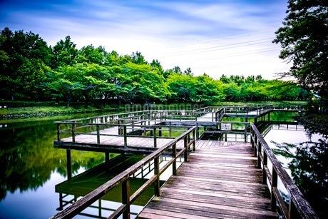 運動公園 日本 埼玉県 鶴ヶ島市の写真素材 [FYI03412322]