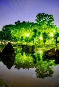 運動公園 日本 埼玉県 鶴ヶ島市の写真素材 [FYI03412323]