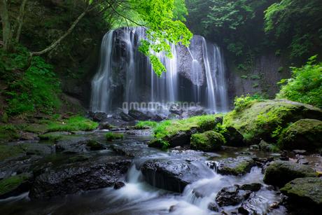 達沢不動滝 日本 福島県 猪苗代町の写真素材 [FYI03412709]