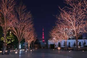東京タワー 日本 東京都 品川区の写真素材 [FYI03412721]