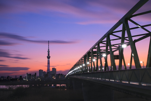 スカイツリー 日本 東京都 葛飾区の写真素材 [FYI03412722]