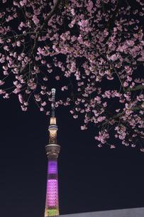 隅田川 日本 東京都 中央区の写真素材 [FYI03412753]
