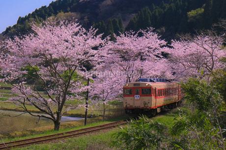 大多喜町 日本 千葉県 大多喜町の写真素材 [FYI03412767]