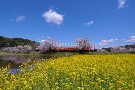 飯給駅 日本 千葉県 市原市の写真素材 [FYI03412770]