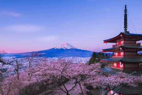新倉山浅間公園 日本 山梨県 富士吉田市の写真素材 [FYI03412774]