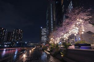 天王州アイル 日本 東京都 品川区の写真素材 [FYI03412775]
