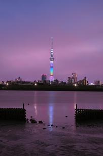 スカイツリー 日本 東京都 葛飾区の写真素材 [FYI03412788]
